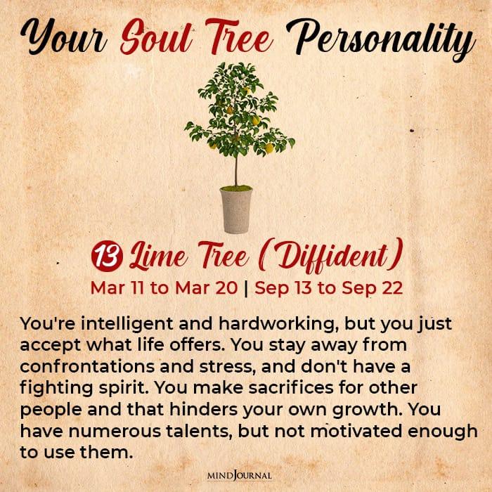 soul tree astrology lime