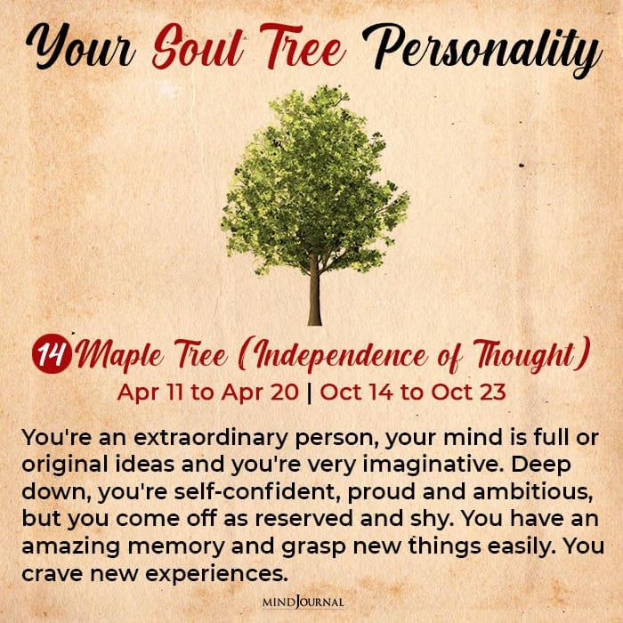 soul tree astrology maple