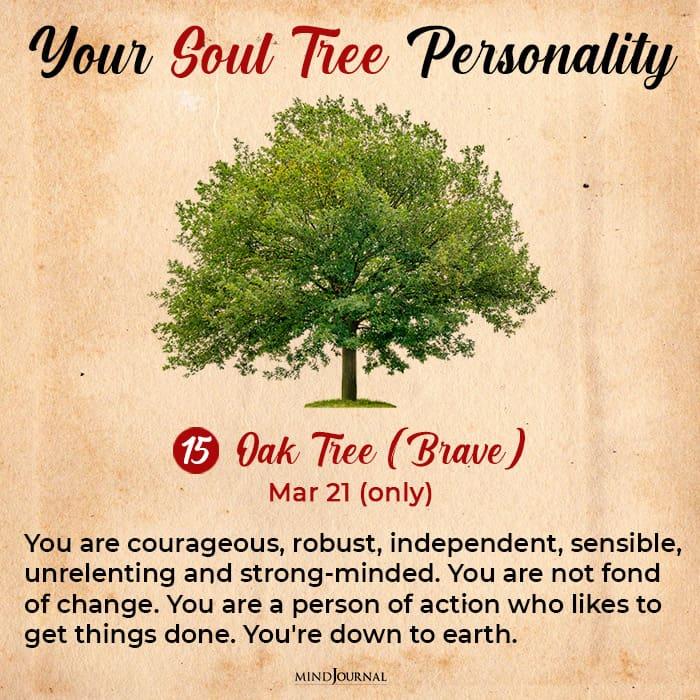 soul tree astrology oak