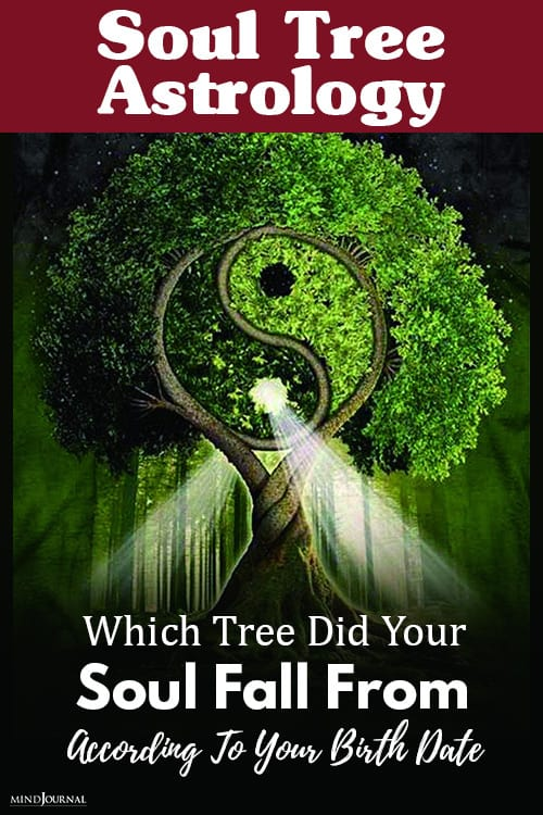 soul tree astrology pin