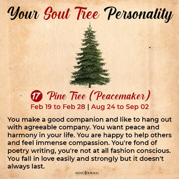 soul tree astrology pine