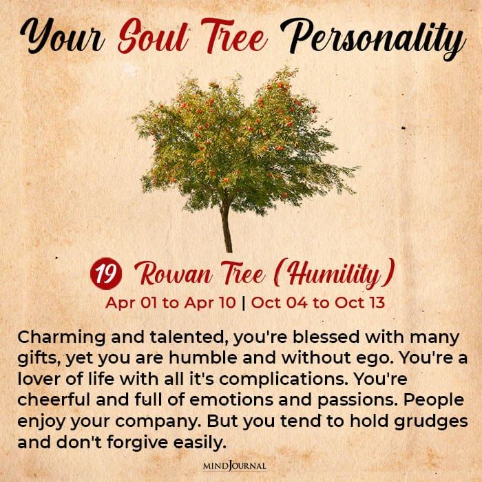soul tree astrology rowan