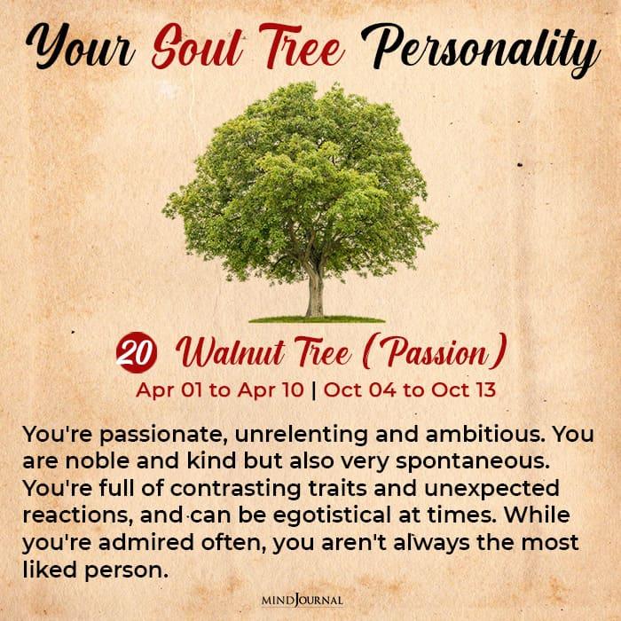 soul tree astrology walnut