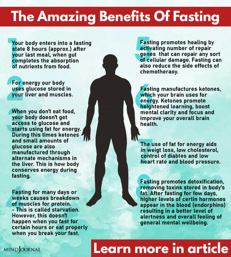 the amazing benefits of fasting on our body according to science info