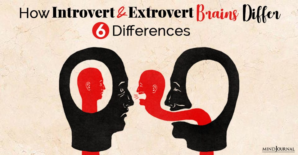 introvert and extrovert brains differ