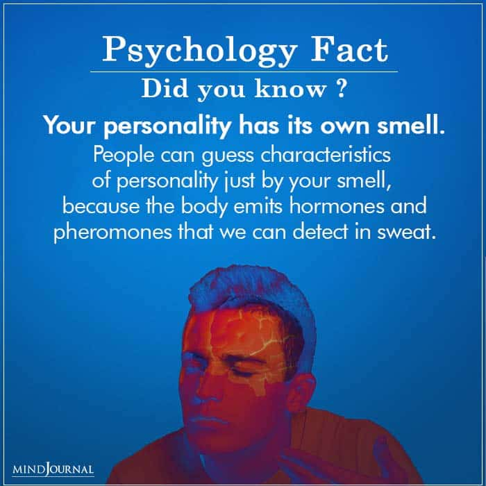 personality fact