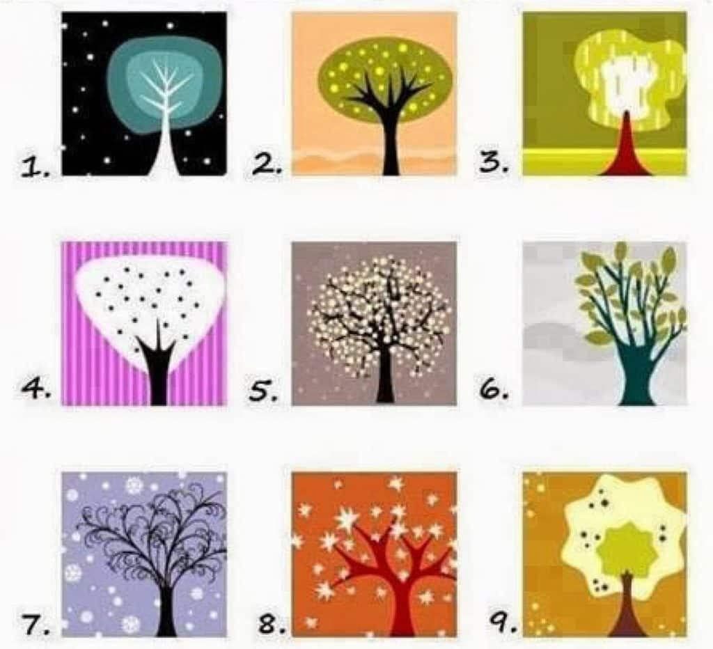Pick A Tree And See What It Reveals About Your Personality: QUIZ