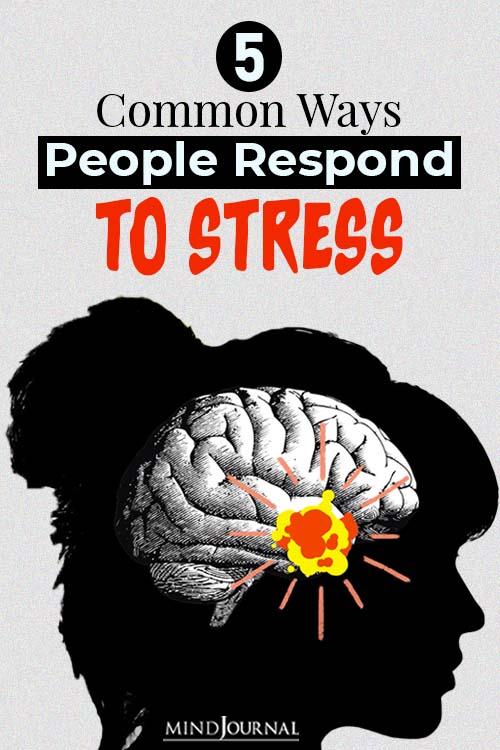 whats your stress response style pin