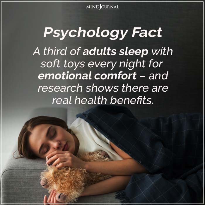 A Third of Adults Sleep With Soft Toys