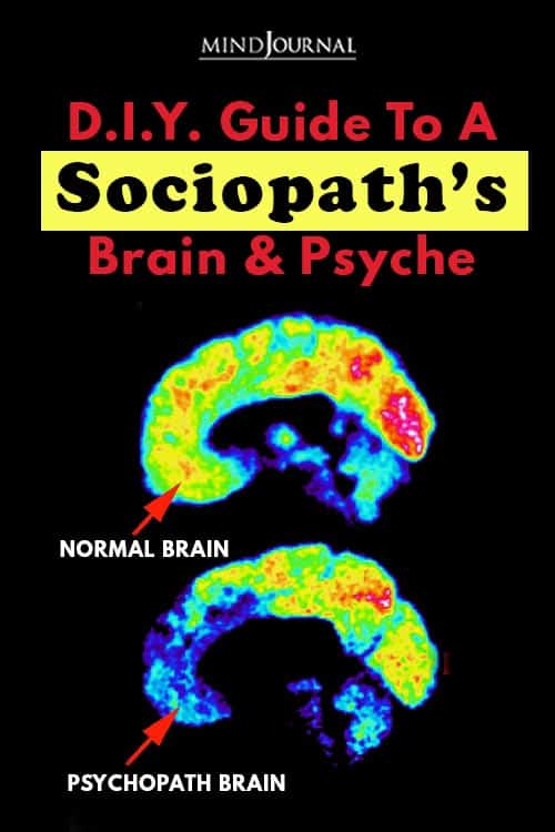 D.I.Y. Guide to a Sociopath's Brain and Psyche_Pin