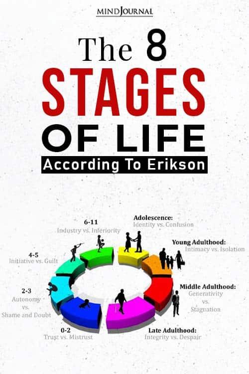 life according to erikson pin