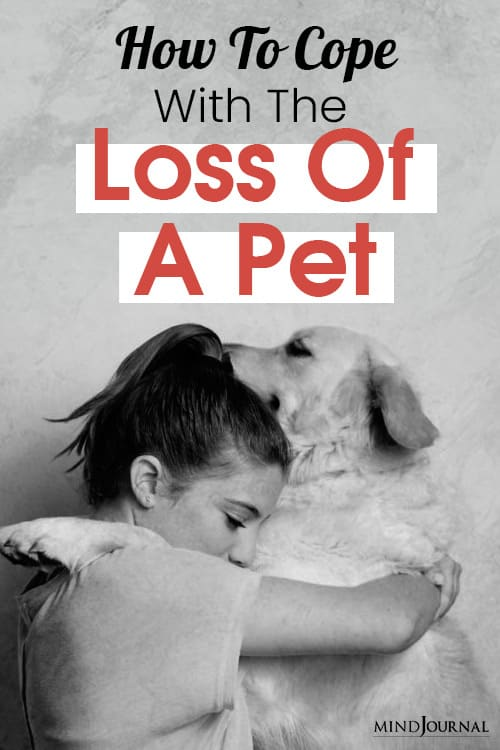 How To Cope With The Loss Of A Pet pin