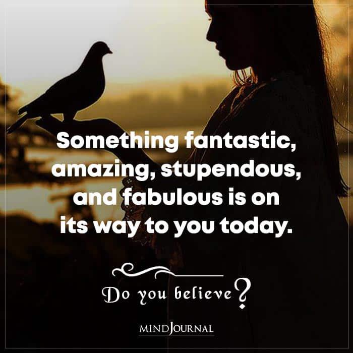 Something Fantastic Amazing Stupendous And Fabulous