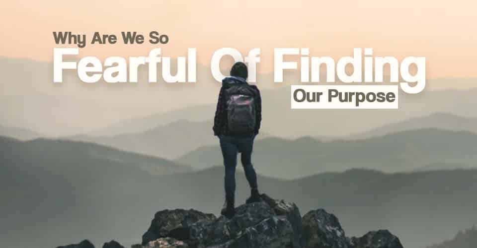 Why Are we so fearful of finding purpose
