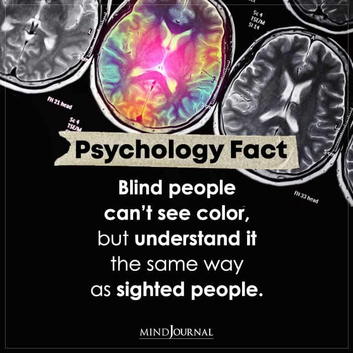 Blind People Cant See Color But Understand