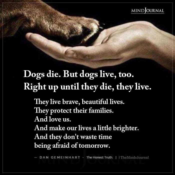 Dogs Die But Dogs Live Too