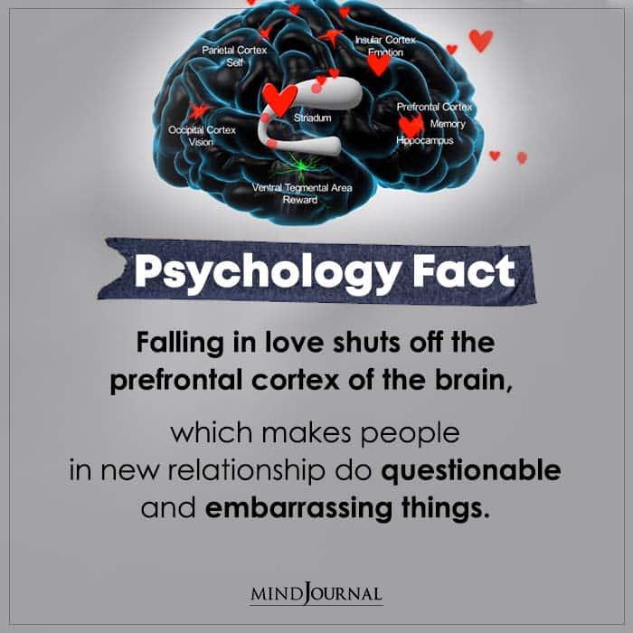 Falling In Love Shuts Off The Prefrontal Cortex Of The Brain