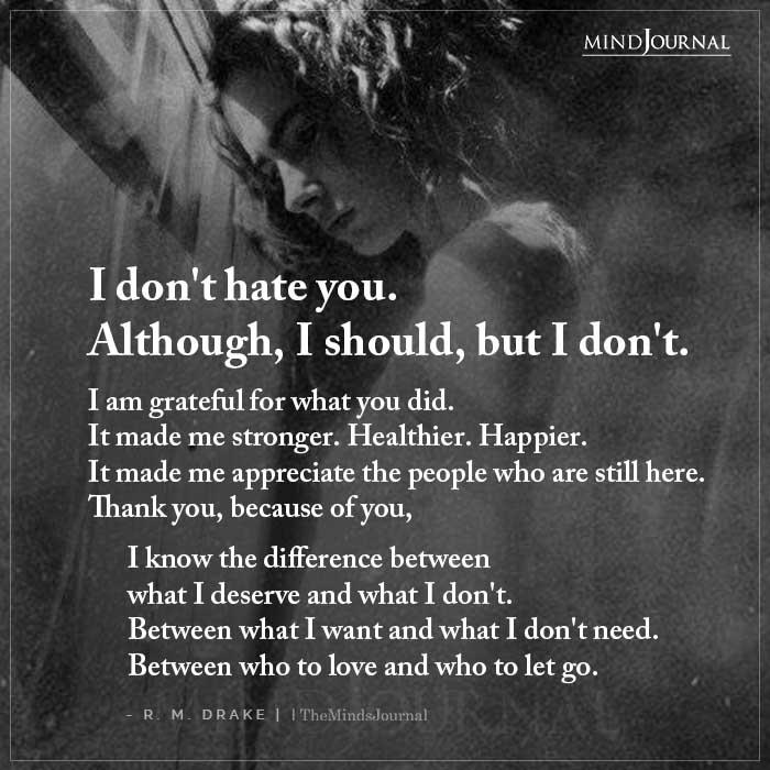 I Dont Hate You Although I Should