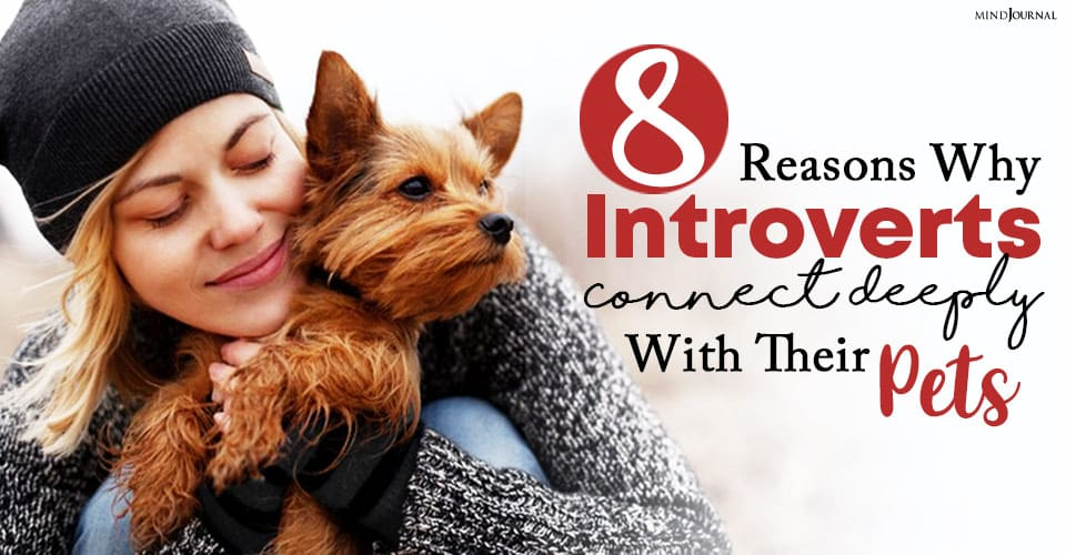 Reasons Why Introverts Connect Deeply With Their Pets