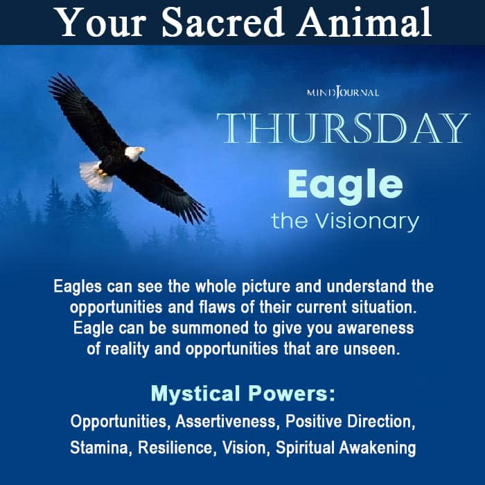 Sacred Animal Of Your Day Of Birth Thursday
