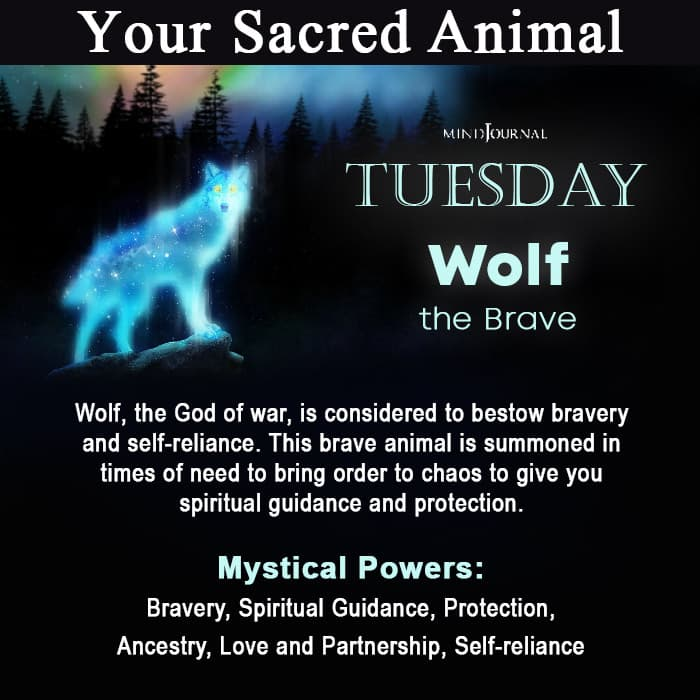 Sacred Animal Of Your Day Of Birth Tuesday