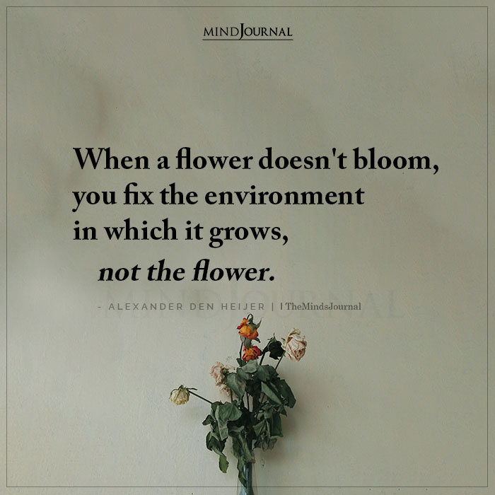 When a Flower Doesnt Bloom