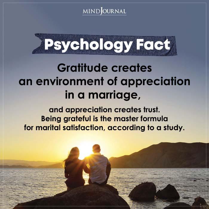 Gratitude Creates An Environment Of Appreciation