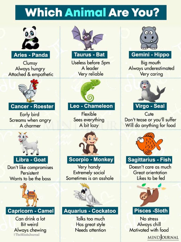 Which Animal Are You Based On Your Zodiac Sign